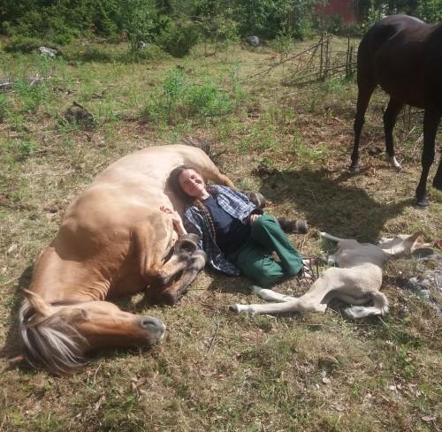 Mira, proud mum and new foal Ronja